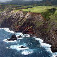 A Little Hawaiian History…