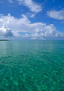 Travel the Blue Lagoon