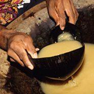 Kava Clubs Preserving Tongan Culture!