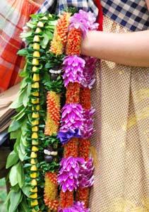 Kava and Family - Creating Unity through Ceremony
