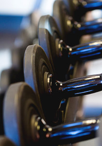 Free weights resting on a weight rack