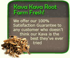 Kava Kava Root Farm Fresh!