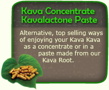 Kava Concentrate Kavalactone 84%